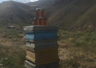 a helyi méz, és távolban a csúcs